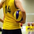 Sporten in Delft